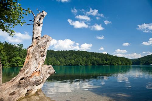 2009-07-17_16-18-09-Kroatien-_MG_5294