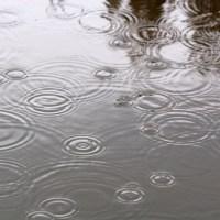 Regen, Regentropfen, See, Teich, kalt, naß, grau, Kreise, ziehen, aufspritzen