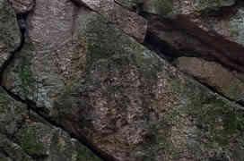 Hohenstein - Endlich geht es wieder an den Fels
