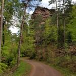 2016-05-04_11-07-39_Pfalz_20160504_110740-1600