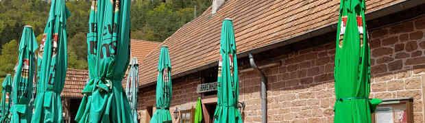 Pfalz - ohne Kletterpartner