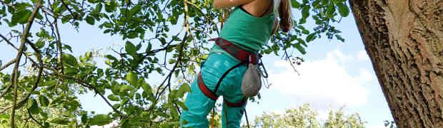 Aufstieg am Seil